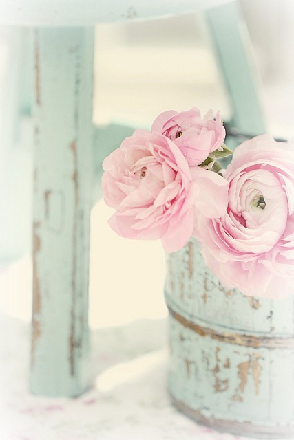 Something pretty to start the week off dont you think pale pink is so soft and understated thats what makes it so pretty and rather delightful mightylinksfo