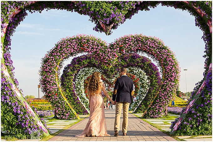 DUBAI BRIDE AND GROOM AT MIRACLE GARDEN - PHOTOGRAPHY BY BLUE EYE PICTURE IN DUBAI.