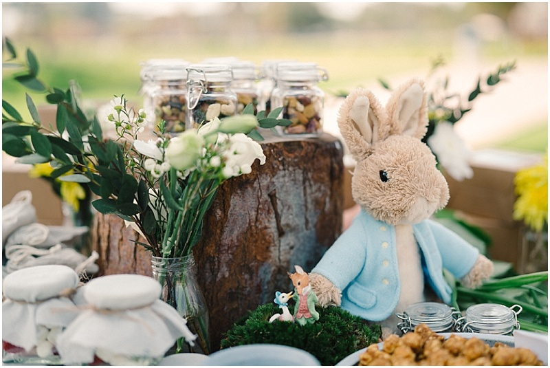 Peter Rabbit Birthday Decor